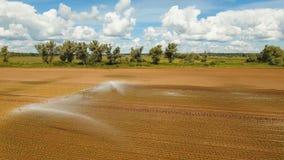 在农田的灌溉系统 库存图片