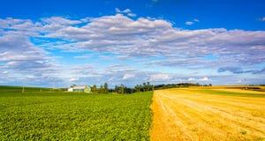 在农田的美丽的天空临近发怒路,宾夕法尼亚 免版税库存照片