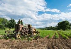 在农田的葡萄酒拖拉机与庄稼 库存图片