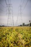 在农田的输电线 库存图片