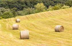 在农田滚动的干草捆 图库摄影