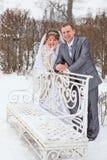 在冬天公园最近婚姻夫妇 库存图片