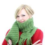在冬天围巾包裹的妇女 库存照片