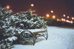 在冬天城市公园的夜 库存图片