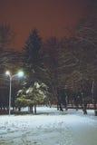 在冬天城市公园的夜 免版税库存照片