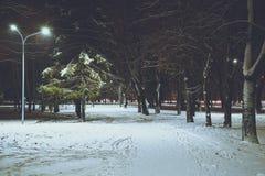 在冬天城市公园的夜 免版税图库摄影