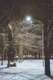 在冬天城市公园的夜 库存照片