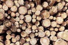 在冬天堆积和准备的木柴 库存图片