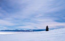 在冬天夜风景的山 免版税图库摄影
