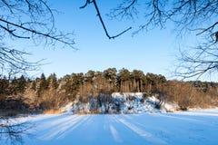 在冬天季节的冻结河和结构树 库存图片