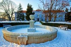 在冬天季节的Mojmirovce城堡 库存图片