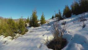 在冬天山的倾斜,在冬天山的小径,冬天风景,在雪的脚印 影视素材