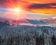 在冬天山的庄严风景在日出 库存图片