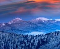 在冬天山的庄严风景在日出 免版税库存照片