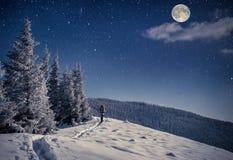 在冬天山的旅行 免版税库存图片