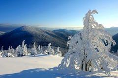 在冬天山的晴天 库存图片