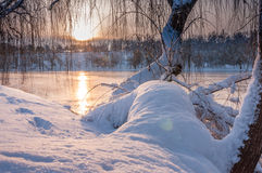 在冬天日出的五颜六色的风景在公园 免版税库存图片
