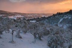 在冬天日落的被迷惑的大气在有雪的福利尼奥 库存图片