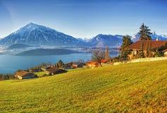 在冬天早晨日出的Thun湖区域农村视图 免版税库存照片