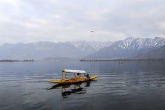 在冬天期间,与一条小船的一个美好的风景在Dal湖克什米尔,印度 图库摄影