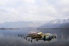在冬天期间,与一条小船的一个美好的风景在Dal湖克什米尔,印度 库存图片