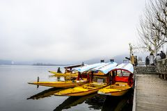 在冬天期间,叫` shikara `的一条美丽的小船在Dal湖克什米尔,印度使用了 免版税图库摄影