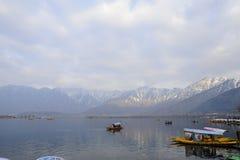 在冬天期间,在Dal湖克什米尔,印度的一个美好的风景 免版税库存照片