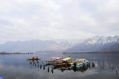 在冬天期间,在Dal湖克什米尔,印度的一个美好的风景 库存图片