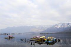 在冬天期间,在Dal湖克什米尔,印度的一个美好的风景 库存照片