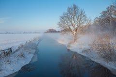 在冬天期间,与冰的偏僻的树与在一条小河的反射 库存图片