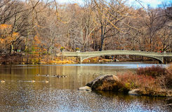 在冬天期间,与pe,弓桥梁的看法在中央公园, 免版税图库摄影