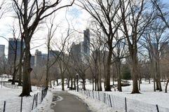 在冬天期间,中央公园 免版税库存照片