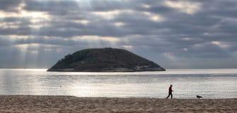 在冬天期间,地中海magaluf海滩 库存照片