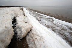 在冬天期间,墨西哥湾海岸 库存图片