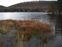 在冬天期间,湖 库存照片