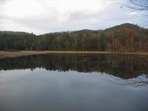 在冬天期间,湖 库存图片