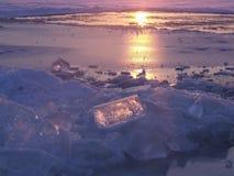 在冬天期间,冻海滩在Syberia 免版税库存图片