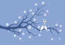 在冬天树,传染媒介的圣诞节鸟 免版税库存照片