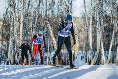 在冬天桦树森林里编组滑雪者经典样式 库存照片