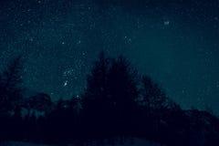 在冬天森林上的夜空 免版税库存图片