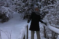 在冬天森林喀尔巴汗里 很多雪,树在雪包了  库存图片