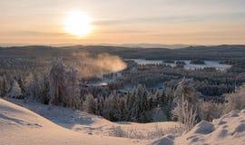 在冬天森林的日落 免版税库存图片