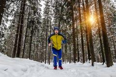 在冬天森林里供以人员跑步在足迹 库存图片