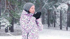 在冬天森林里喝热的茶的一个年轻女性游人在期间降雪 活跃休闲,旅游业的概念 股票视频