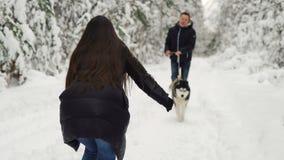 在冬天森林里,女孩站立与她用开放她的手,并且有一条多壳的狗的一个人跑遇见她 A 股票视频