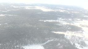 在冬天森林风景的鸟瞰图与常青树 影视素材