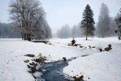 在冬天横向的小河 免版税库存照片