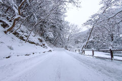 在冬天横向的路 库存图片