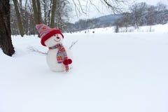 在冬天横向的雪人 免版税库存照片