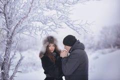 在冬天步行的一对爱恋的夫妇 雪爱情小说,冬天魔术 男人和妇女在冷淡的街道上 人和女孩是休息 免版税库存照片